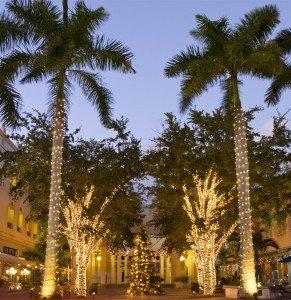 christmas palm tree (Large)