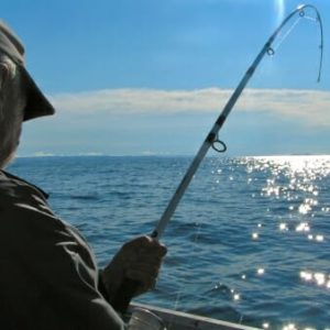 6 Reasons Nature Lovers are Nuts About Charleston, SC! - Deep Sea Fishing