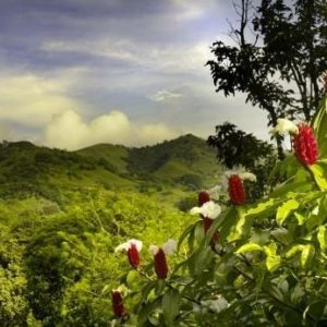Best Places to Retire in Costa Rica