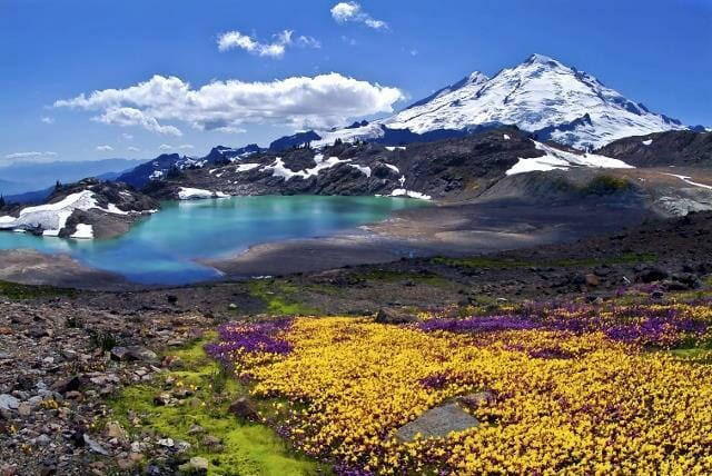 Mount Baker Summer
