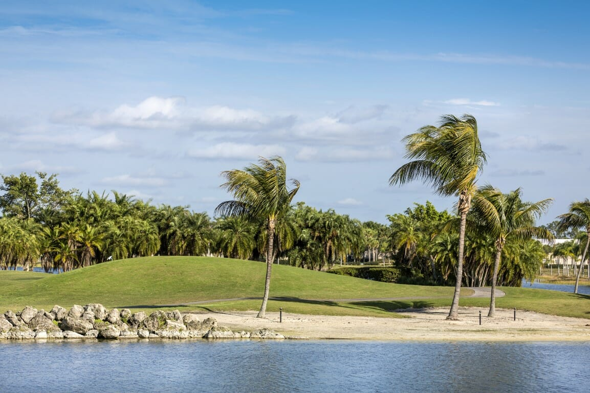 Palm trees by green lawn resort in Naples, Florida