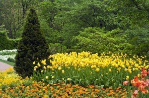 Climate change in the garden - Longwood Gardens PA - Best Places to Retire