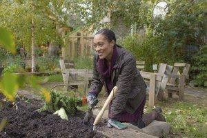 Fall Gardening Tips - Compost - October Gardening