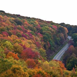 Part of the Cherohala Skyway, TN, (Cherokee Nantahala) in the fall