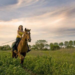 Del Webb Stone Creek - Top Florida Retirement Destinations - Ocala Florida - Horse Country - Equestrian