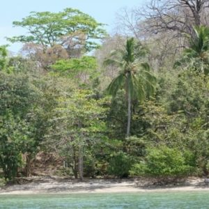 Costa Rica Retirement Communities - Organically Magical Villages