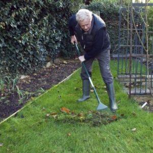Gardening Tips - Raking leaves - Winterize your garden