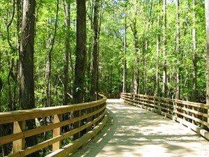 Bridge on 16 to 17_largelo