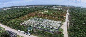 organic farm Tropical Sustainability | Save Money | International Living is King in Saving