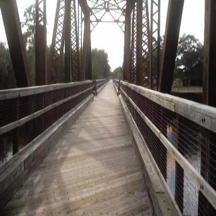 Withlacoochee State Forest Trail Bridge