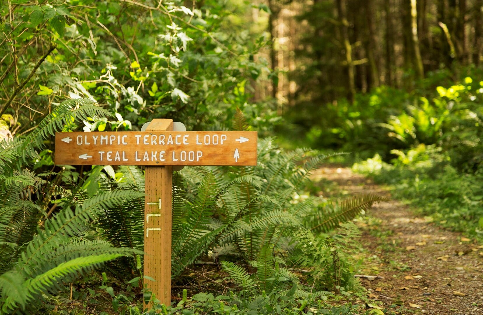 Active Adult Community near Seattle WA | Port Ludow | Waterfront Homes
