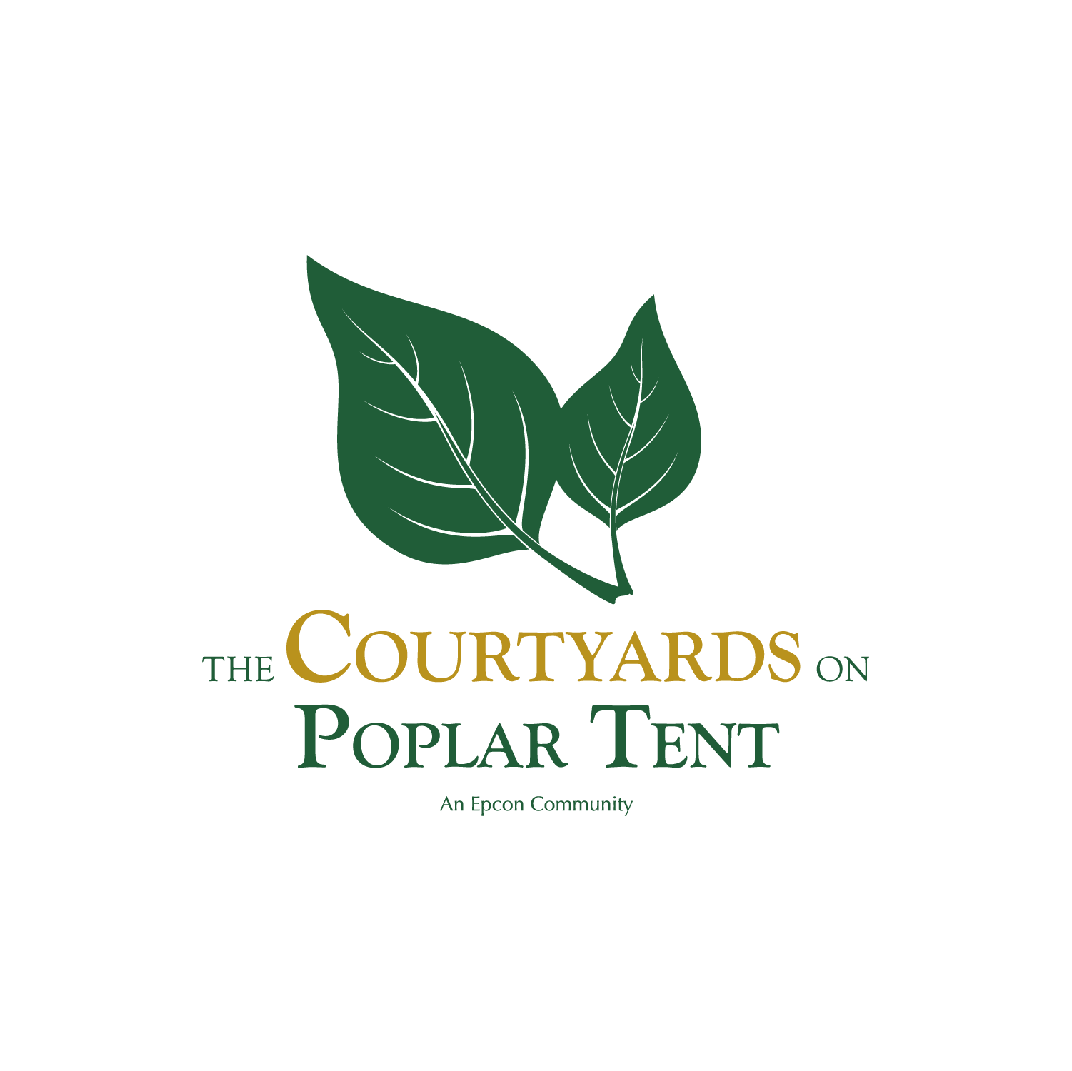 The Courtyards on Poplar Tent (1)