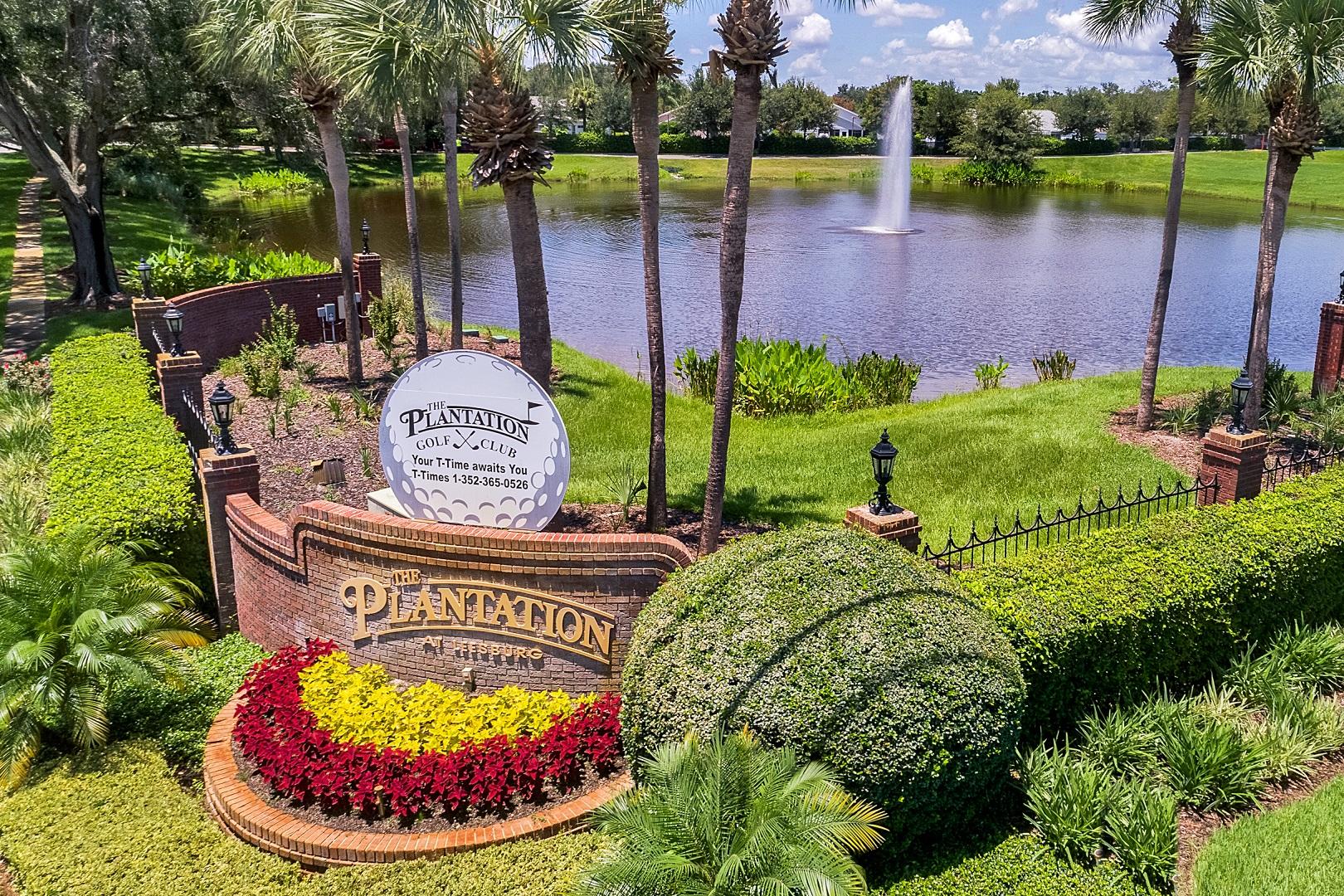 25339 Hibiscus St, Leesburg, FL 34748