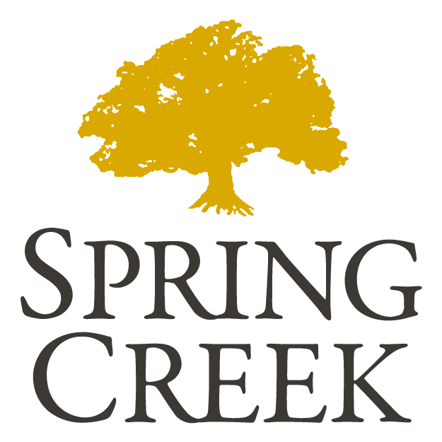 spring-creek (2)