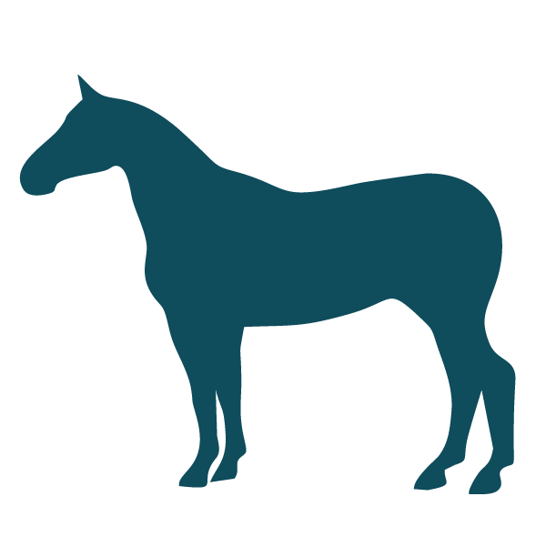 Equestrian Horse Icon-large